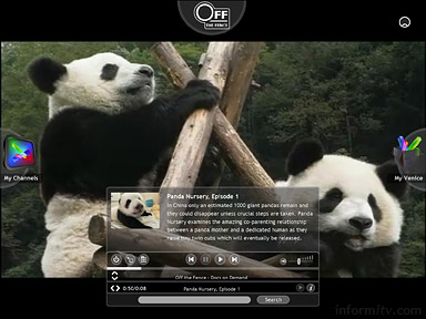 The Venice Project screenshot of programme information and playback controls over full-screen video, showing Panda Nursery from Off the Fence.
