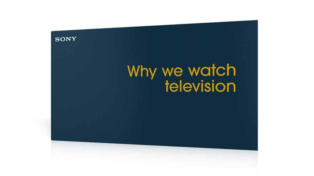 Why We Watch Television - report cover